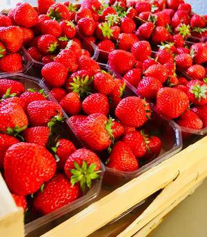 Lecker Erdbeeren